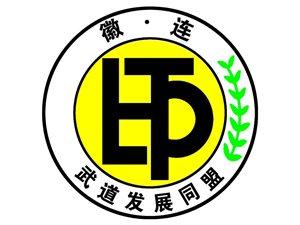 宿州盛唐王冠跆拳道