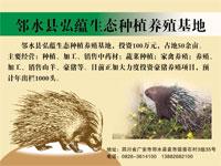 邻水县弘蕴生态种植养殖基地