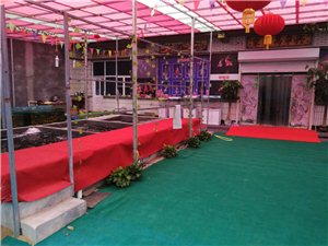 景县鱼乐园大型水族馆