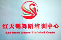 蓝田县红天鹅舞蹈艺术培训中心