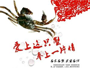 美嘉源生态大闸蟹形象图