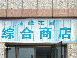 蒲峰花园综合商店形象图
