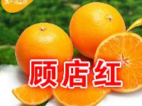 枝江市顾店红柑桔专业合作社
