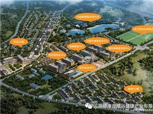 云南博康凤凰谷健康产业开发有限公司