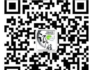 中山丰铁贸易有限九五至尊娱乐网址