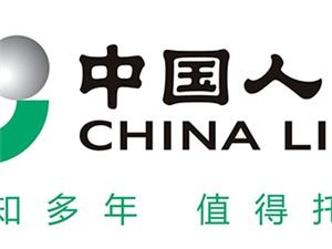 中國人壽大英申群鳳團隊