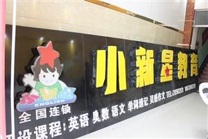 杞县小新星国际教育形象图
