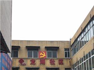 蕭縣龍城鎮龍湖社區形象圖