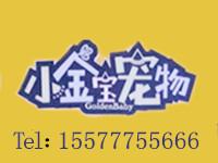 桦南小金宝宠物店形象图