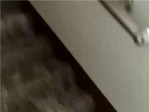 你见过验收合格这种消防栓吗?
