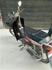 闲着110弯梁摩托车,烧汽油的,110的发电机,要挂档,4个档,成色8成新,闲置半年多了,好启动。接...