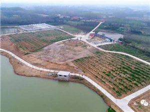 潢川这个500亩果园全城招募农场主,还免费送...