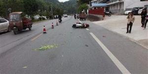 小伙开车摆弄手机在城固撞飞一电动车致人亡