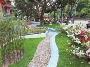 香洲区召开加强城市精细化管理深化文明城市建设会议 制订管理标准 打造美丽城区
