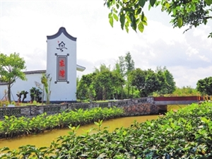 农村人居环境综合整治结硕果 斗门118个涉农村居美丽嬗变