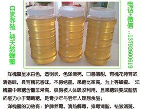 自家养殖蜂蜜 纯天然无添加 纯正蜂蜜
