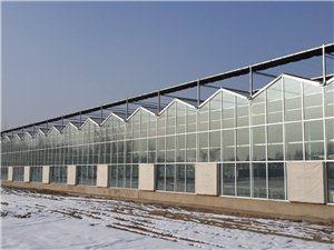 玻璃温室大棚建造选青州市华途温室工程,质量可靠