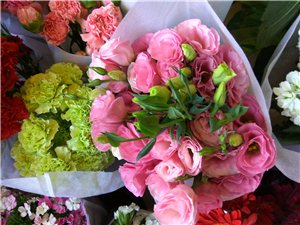 刚到的新鲜花,新密市溱水路东山口对面玖玖花艺店