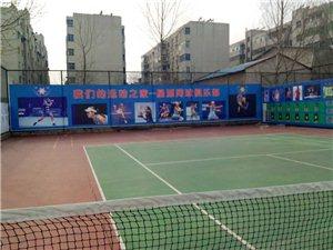新密星源网球暑期班开始啦!