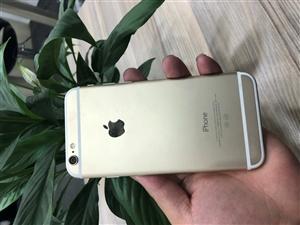 苹果6 32g金色 外观98新 用了半年 价格1180 有问题可以质保 可以分期0首付