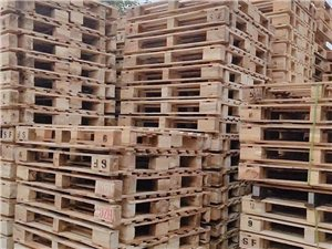 回收废木头,托盘
